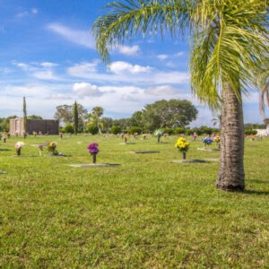 hodges funeral cemetery on a sunny day with palm tree
